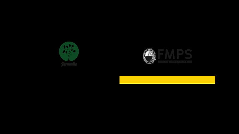 Fondazione MPS